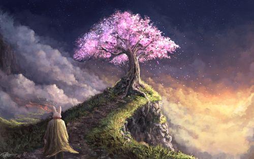 悬崖 云 草甸 日落 树谷 大气 兔子 唯美风景超高清壁纸精选