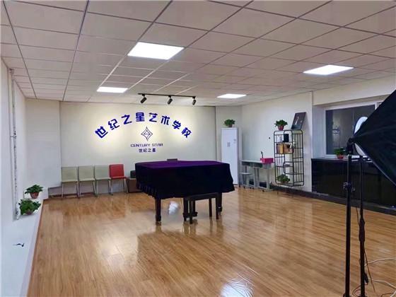 高三音乐培训班怎么联系山东世纪之星艺术培训机构