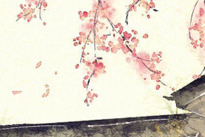 梦见好几种颜色的花